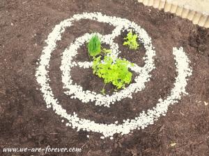 kräuterspirale einfach selber bauen
