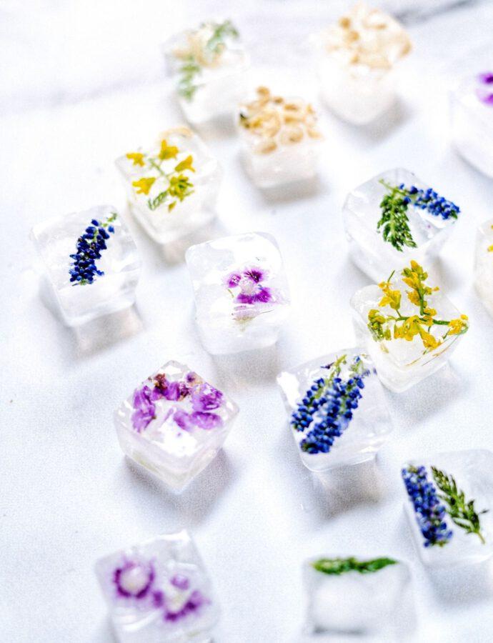 Eiswürfel mit echten Blumen selber machen